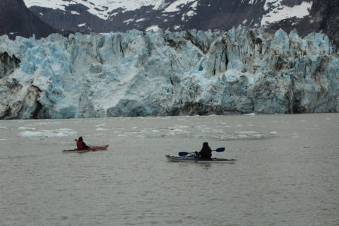 July 1, 2016 Day 10 Alaska (Glacier Bay Day 3) – Happy Canada Day